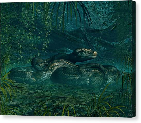 Reticulated Pythons Canvas Print - Monty Python by Walter Colvin