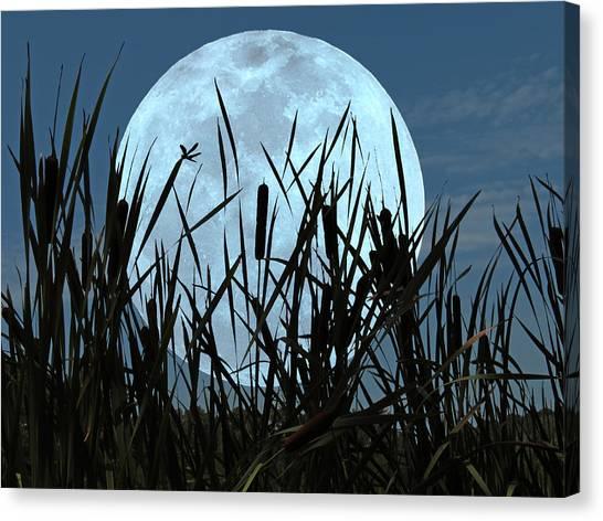 Moon And Marsh Canvas Print