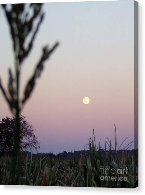 Corn Maze Canvas Print - Moon by Andrea Anderegg
