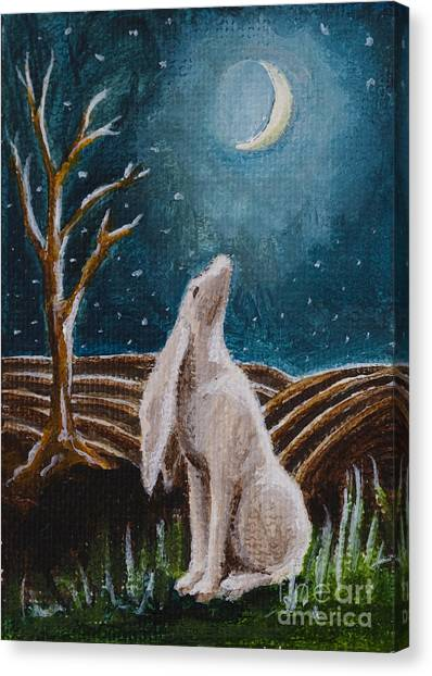 Moon-gazing Hare Canvas Print by Nicole Okun