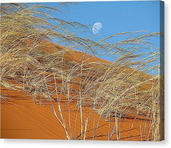 Moon Over Dune Canvas Print