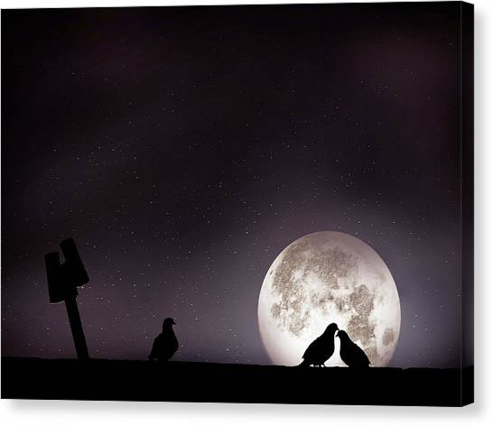 Syrian Canvas Print - Moon With Love Pigeon by Mhd Hamwi