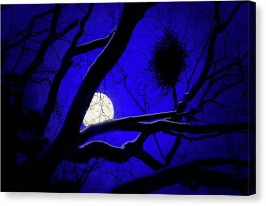 Moon Wood  Canvas Print