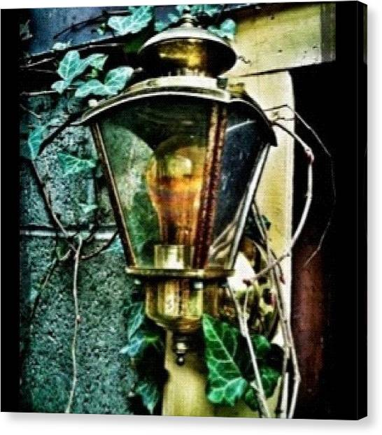 Magicians Canvas Print - more From My Lantern Series by Carrie Mroczkowski
