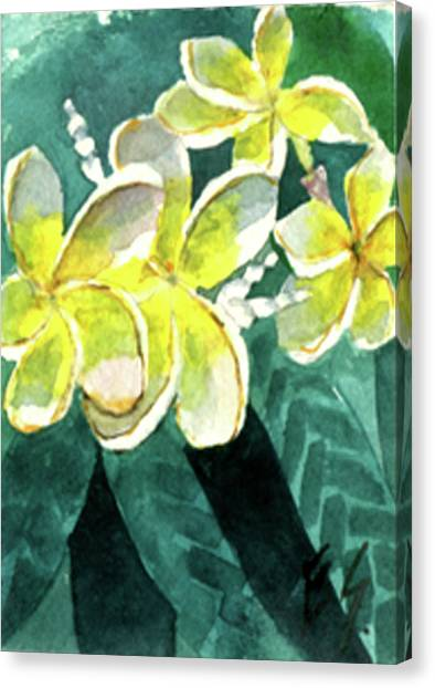 More Plumeria Canvas Print
