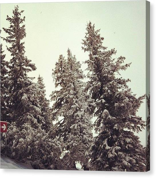 Swiss Canvas Print - More Snow.. ⛄ by Marce HH