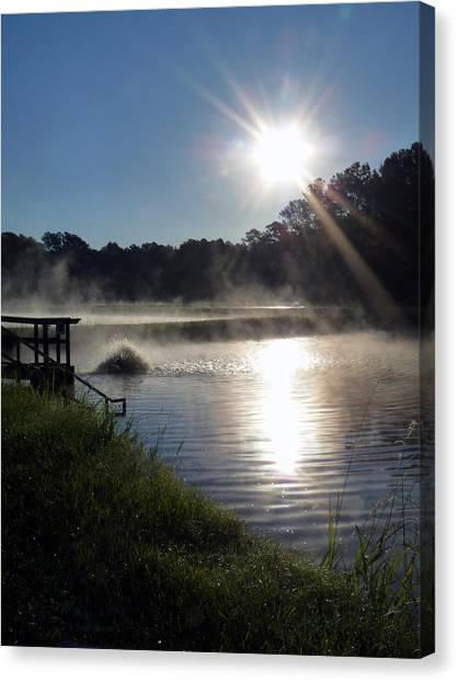 Morning At The Fish Hatchery Canvas Print by Terry Eve Tanner