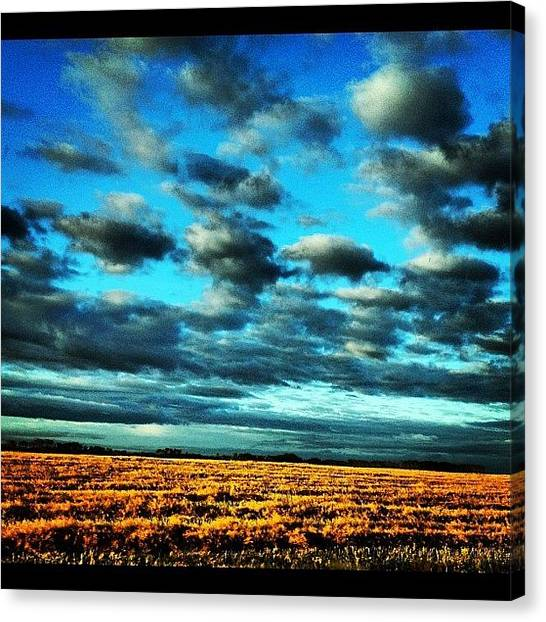 Harvest Canvas Print - Morning! by Christine Huberdeau