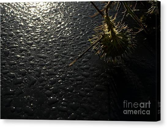 Morning Comes To All Canvas Print by The Stone Age