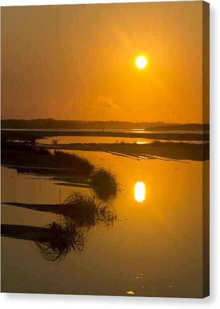 Morning Gold Canvas Print by Alan Raasch