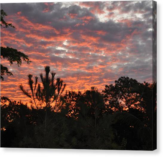 Morning Inspiration Canvas Print