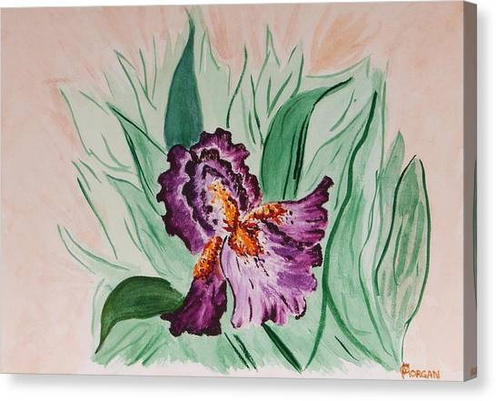 Morning Iris Canvas Print
