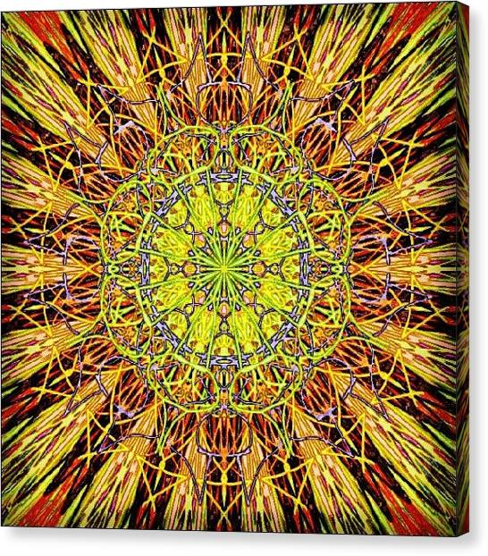 Meditation Canvas Print - Morning Mandala by Vicki Field
