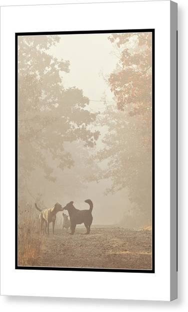 Morning Meeting Canvas Print