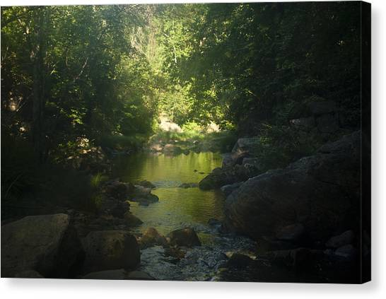 Morning River Canvas Print by Daniel Milligan