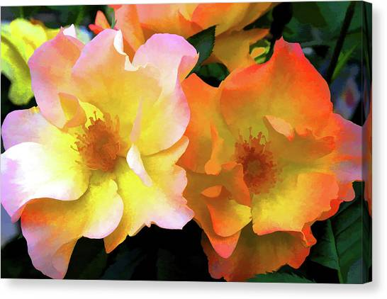 Morning Roses Canvas Print