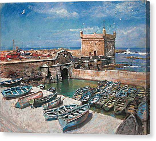 Seagull Canvas Print - Morocco by Ylli Haruni