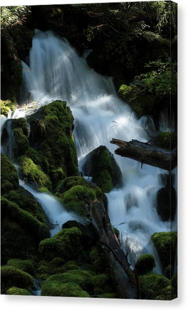 Mossy Cascades Canvas Print by Harry Snowden
