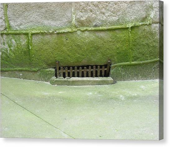 Mossy Grate Canvas Print