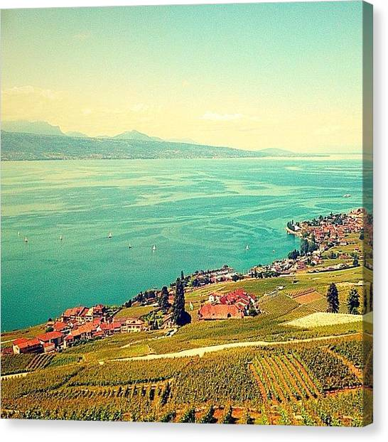 Vineyard Canvas Print - Most #beautiful #lake Ever! by Christoph Flueckiger