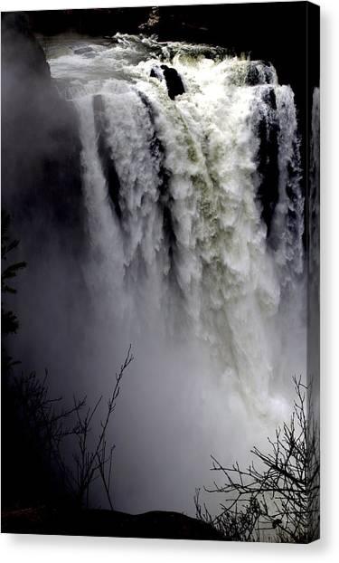 Mother Nature's Roar Canvas Print