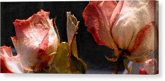 Mother's Roses Canvas Print