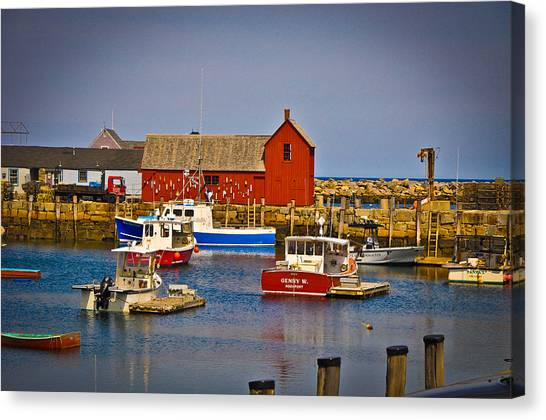 Motif 1 Canvas Print by Erica McLellan