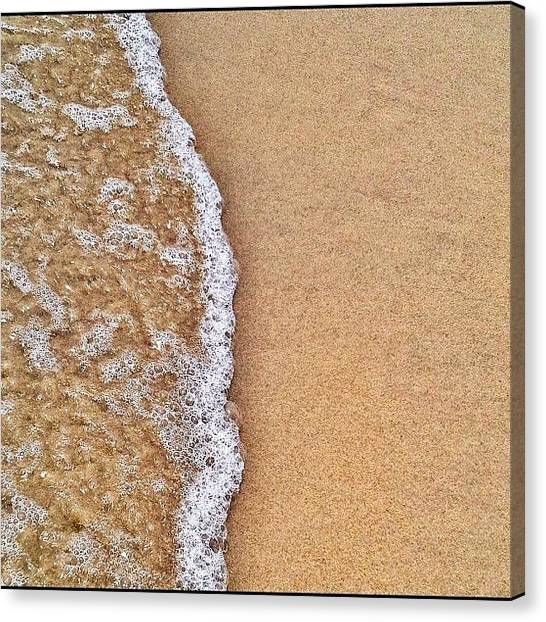 Foxes Canvas Print - Motion. #beach #water #ocean by Rachel Fox Burson