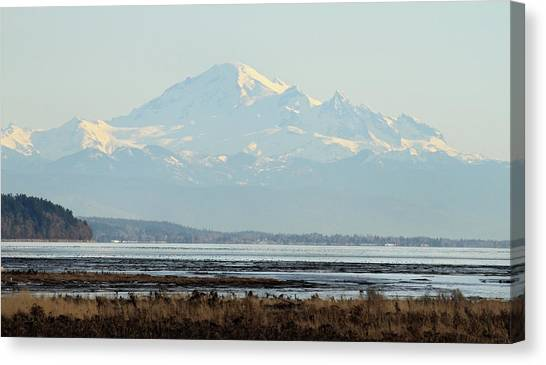 Mount Baker From Boundary Bay Canvas Print by Pierre Leclerc Photography