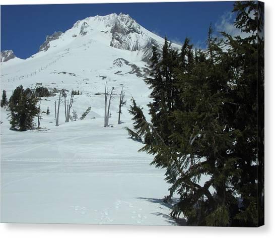 Mount Hood Oregon Ski Trail Canvas Print