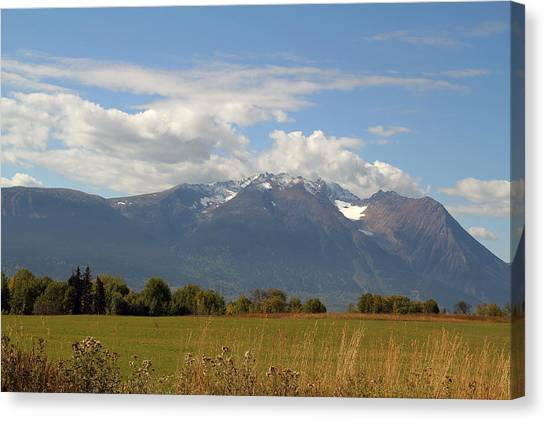 Mountain Field Canvas Print by Kim French