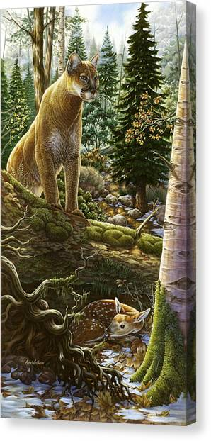 Mountain Lion With Fawn Canvas Print