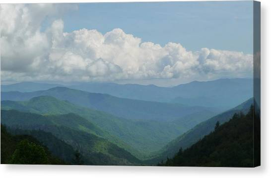 Mountain Magnificence Canvas Print by Michael Carrothers