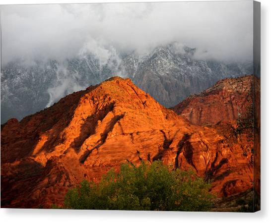 Mountain Mist Canvas Print by Marta Alfred