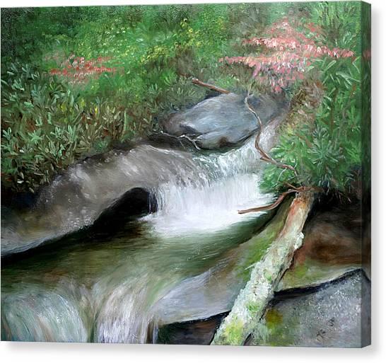 Mountain Retreat Canvas Print by Max Mckenzie