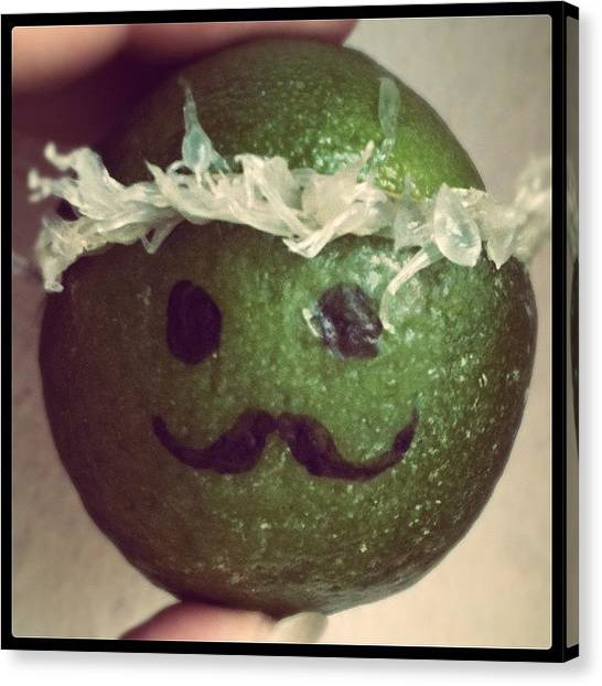 Limes Canvas Print - Mr. Moustache @kewiki @kimilove by Melanie Stork