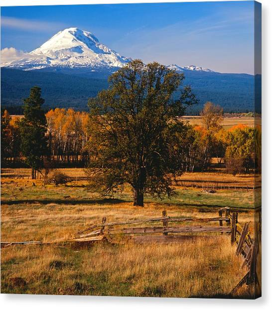 Mt. Adams Autumn Canvas Print