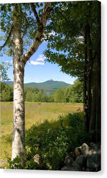 Mt. Chocorua Summer Vertical Canvas Print