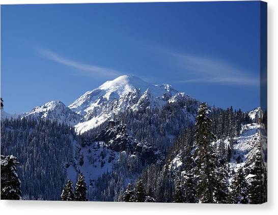Mt. Rainier In Contrast Canvas Print