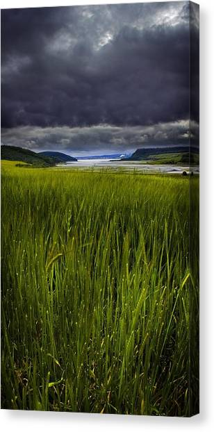 Munlochy Bay Canvas Print