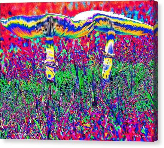 Mushrooms On Mushrooms Canvas Print