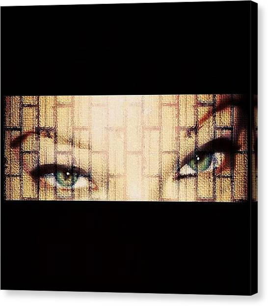 Irises Canvas Print - My Cat Eyes In Brick... Trying To Be by Julianna Rivera-Perruccio
