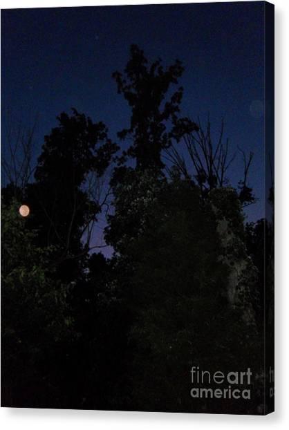 My Personal Backyard Moon Canvas Print