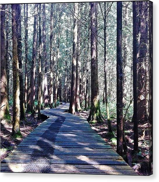Trail Canvas Print - My #perspective During A Stroll Through by Victor Wong