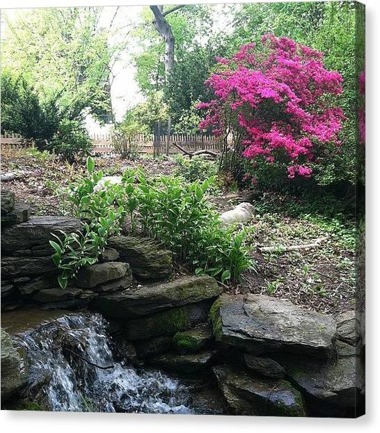 Waterfalls Canvas Print - My Secret Garden by Michelle White