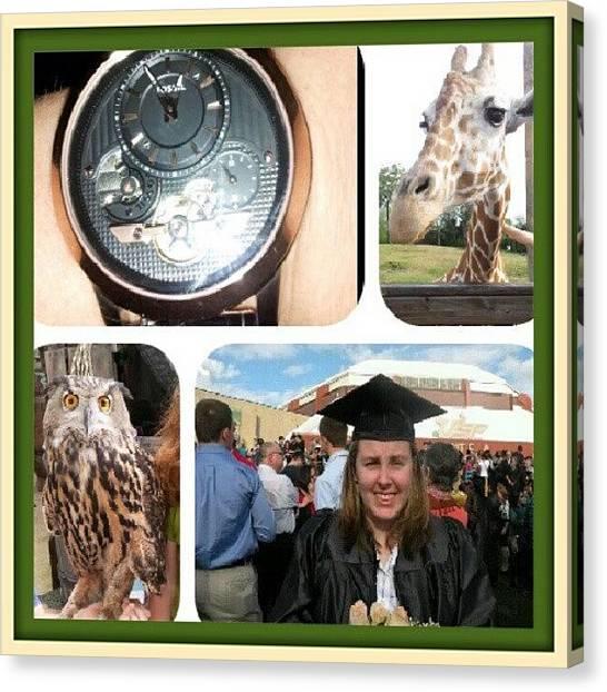 Giraffes Canvas Print - My Weekend. #graduation #graduated by Beth B