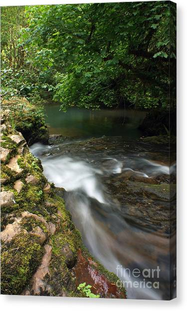 Mystic Creek Canvas Print by Tyra  OBryant