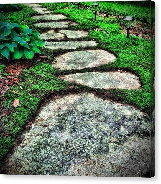 Trail Canvas Print - Mystic Path by Maury Page