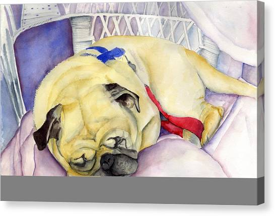 Naptime For Baden Canvas Print by Paul Cummings