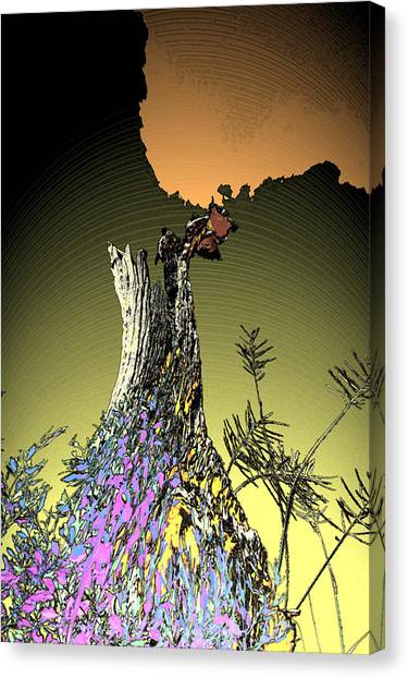 Nature's Dress Canvas Print